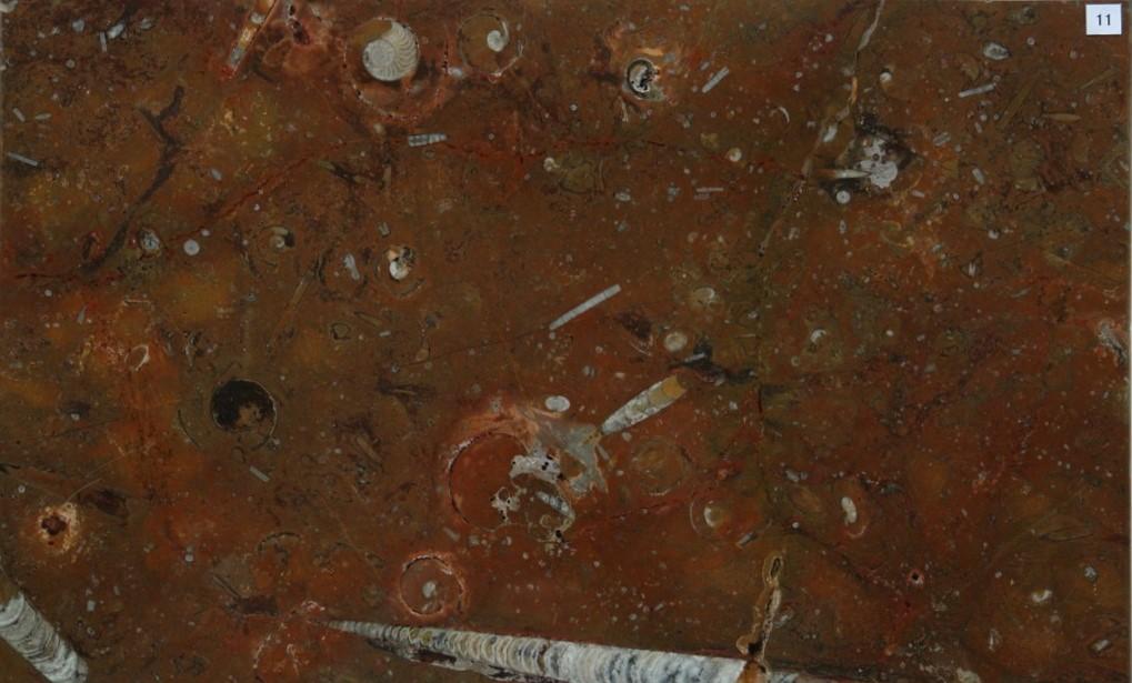 化石石 花台