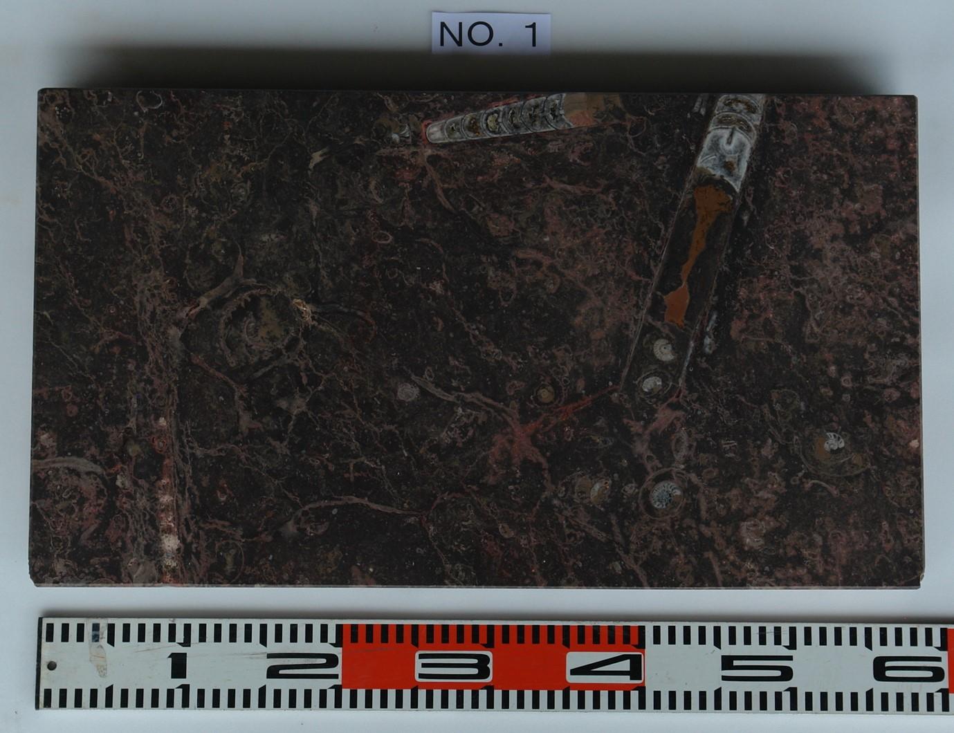 化石石 花台 品番1